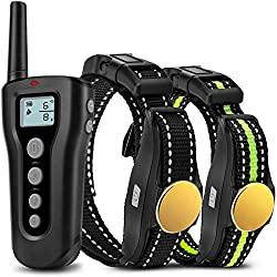 Bousnic Dog Training Collar Set