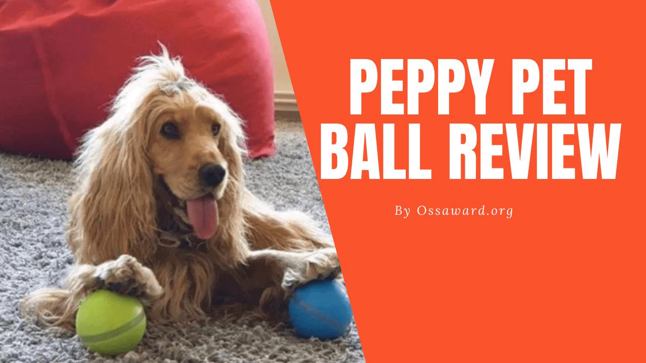 Peppy Pet Ball recensie